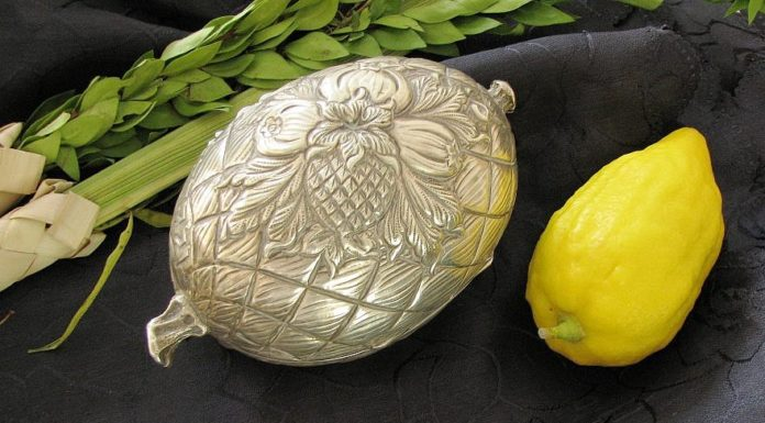 An etrog, silver etrog box and lulav, used on the Jewish holiday of Sukkot. Credit: Wikimedia Commons.